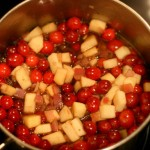 Going All Chutney On My Cranberries