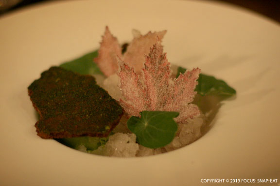 Shaved ice with hibiscus, nasturtium, elderflower, and chocolate mint moss ($11)