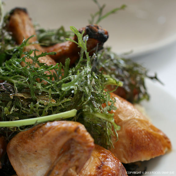 Zuni Cafe's Roasted Chicken + Bread Salad Recipe — Dishmaps