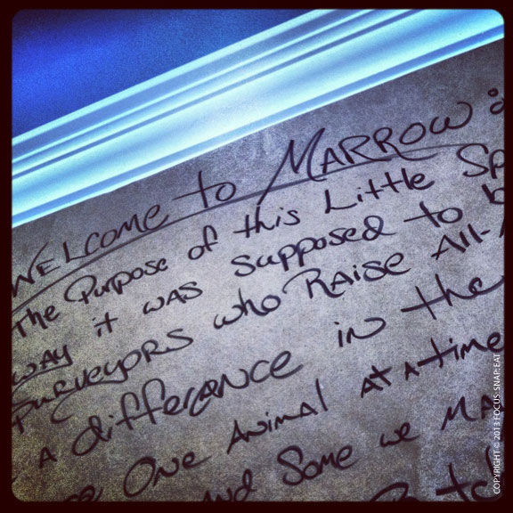 Part of Marrow's manifesto written on butcher paper on the wall.