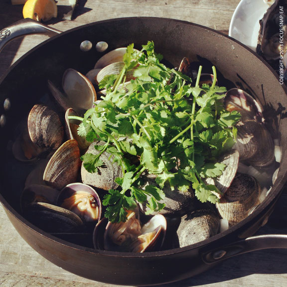 While I wasn't much help with the shucking, I did cook up this pan of clams with white wine