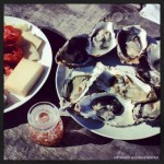 Fresh Oysters, Friends, and a View at Tomales Bay Oyster Co.