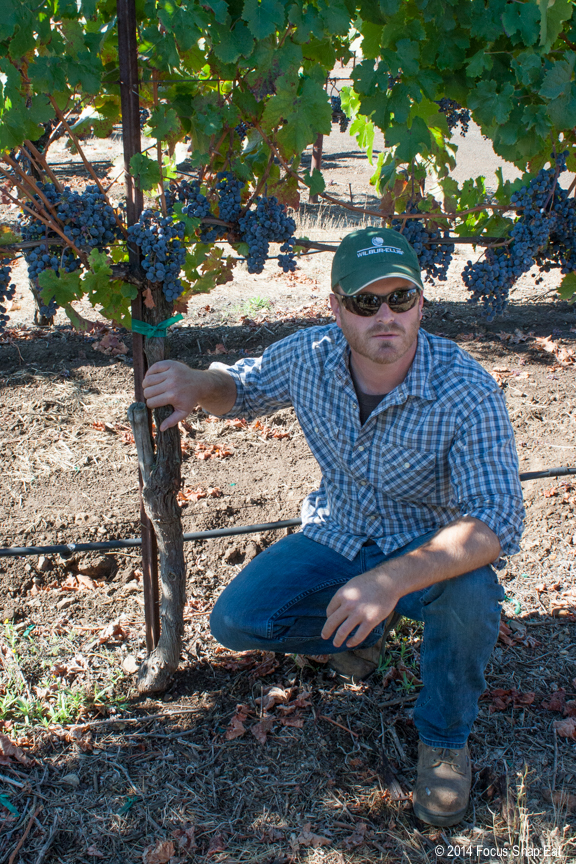 Vineyard manager Jake Terrell talks about caring for the vines and how they handled this year's drought.