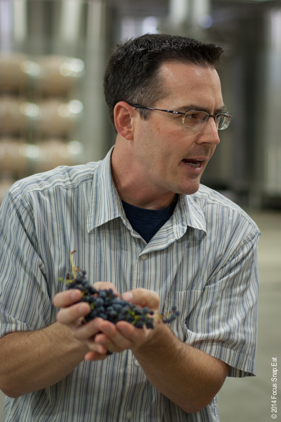 Chris Louton, one of the two winemakers at St. Francis, talks about the freshly picked grapes.