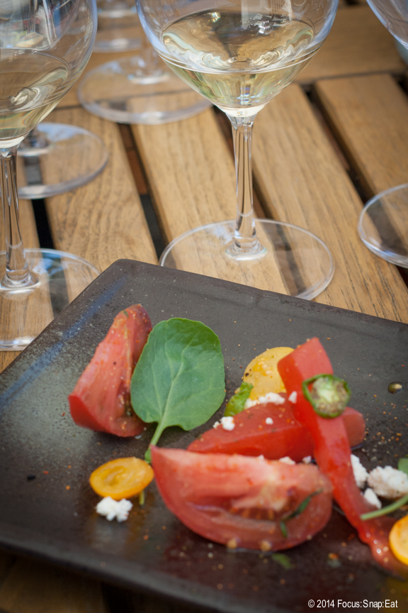 The wine and food pairing started off with an heirloom tomato salad with padron peppers.