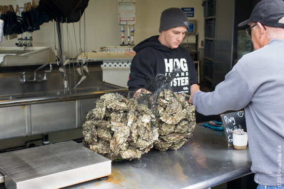 "The Hog Shack also has a ""to go"" window where people stop to pick up un-shucked oysters to take home."