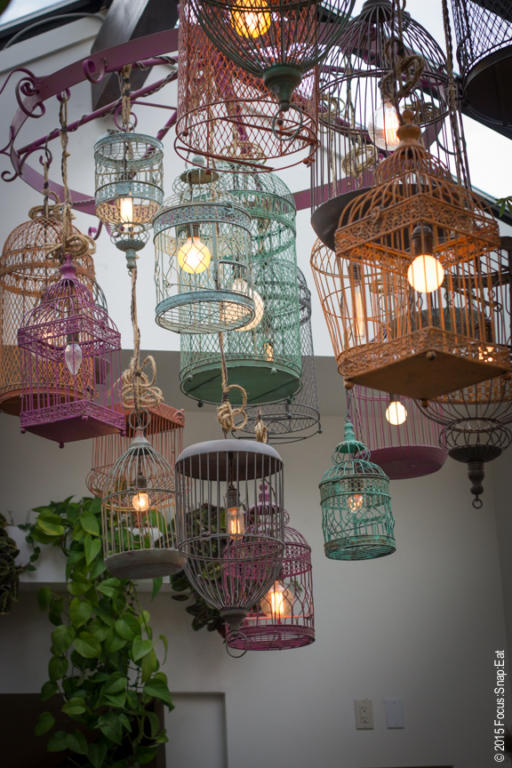 Colorful bird cages create a centerpiece in the main room.
