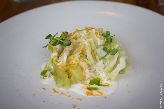 "Cabbage with house buttermilk and uni ""bottarga"""