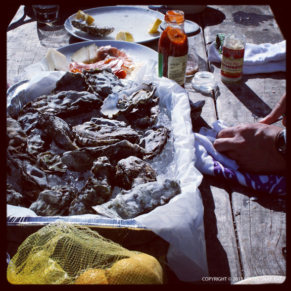 Our picnic table with the largest looking medium oysters I've seen.