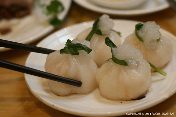 An unusual scallop dumpling in a beggar's pocket-style wrap. Tasted great but the skin was a bit thick.