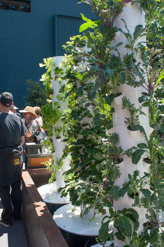 Herbs and a variety of lettuce grow in miniature pots along columns in the garden.