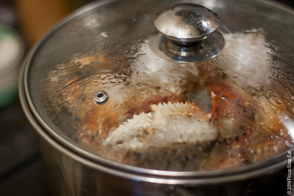 Crab in my steamer