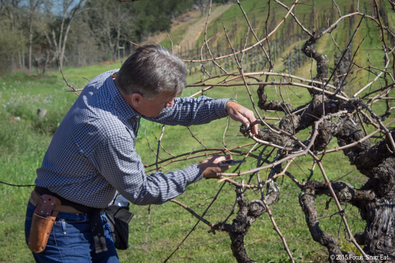 Jim Dolinsek of Dolinsek Ranch gave a brief lecture about pruning the vines.