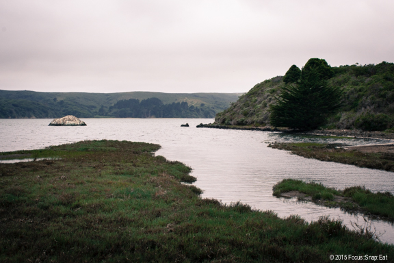 The overcast day at Tomales Bay meant it was easy keeping our oysters cool and fresh.