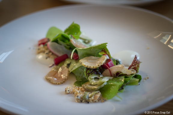 A portion of the green strawberry and rhubarb salad ($13) with Fruition Farms skyr, miner's lettuce, and green almond vinaigrette.