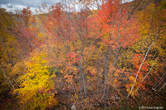 Laurentian mountain fall colors