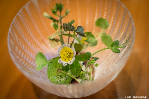 Wagyu beef cube under edible flowers