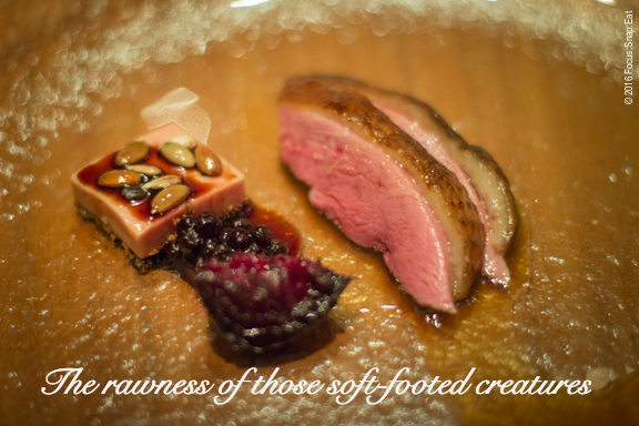 Duck breast with foie gras and beets and berries with a drizzle of aged balsamico the chef brought back from Modena.